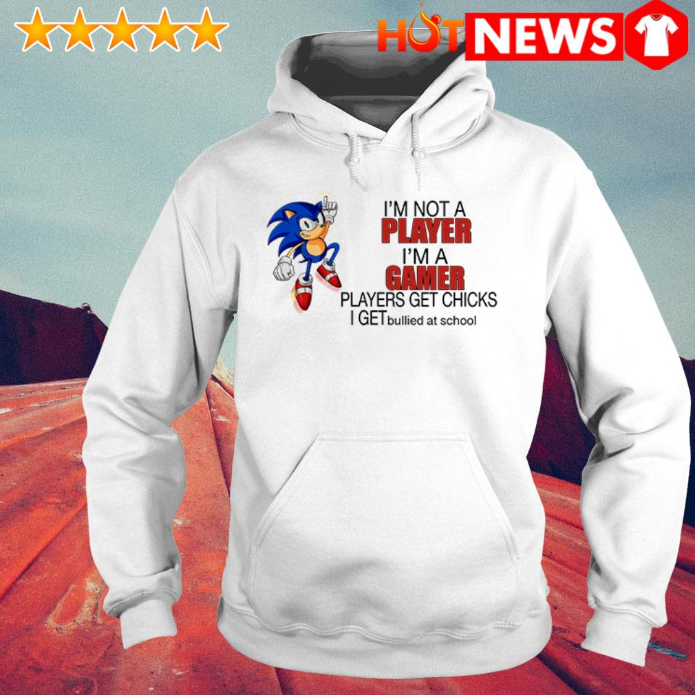 Sonic I'm a gamer players get chicks I get bullied at school Hoodie