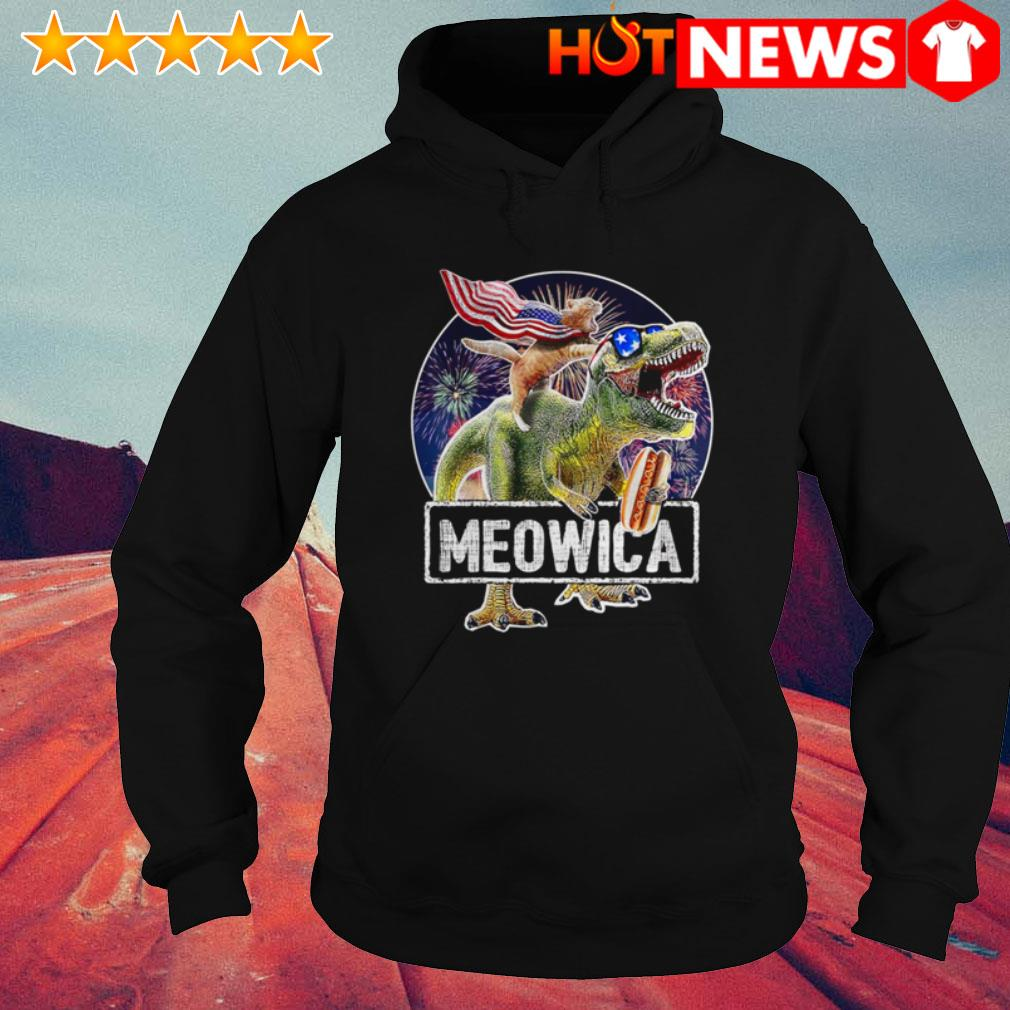 4th Of July Independence day Meowica Cat T-rex Dinosaur Hoodie