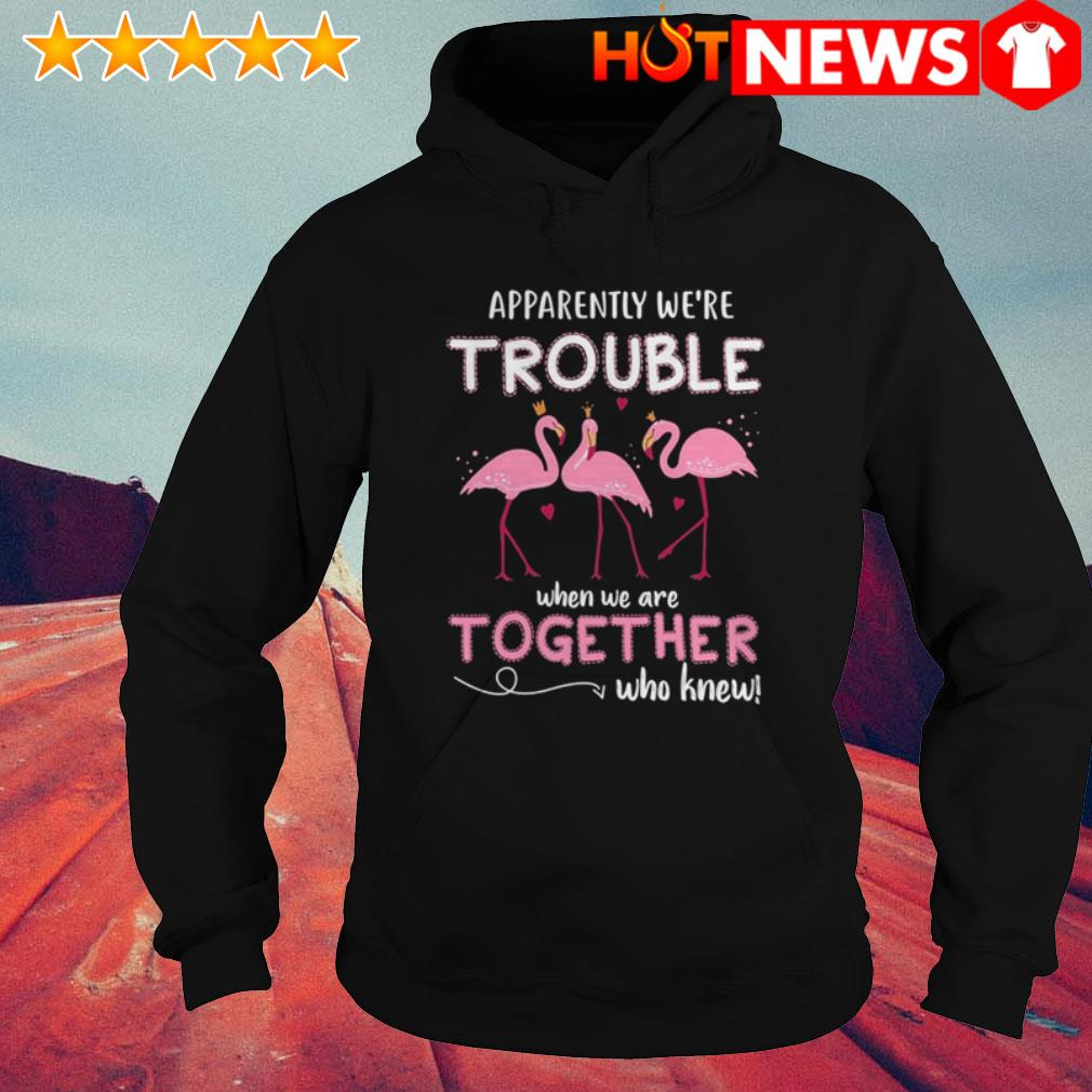 Apparently we're trouble when we are together who knew Flamingos Hoodie