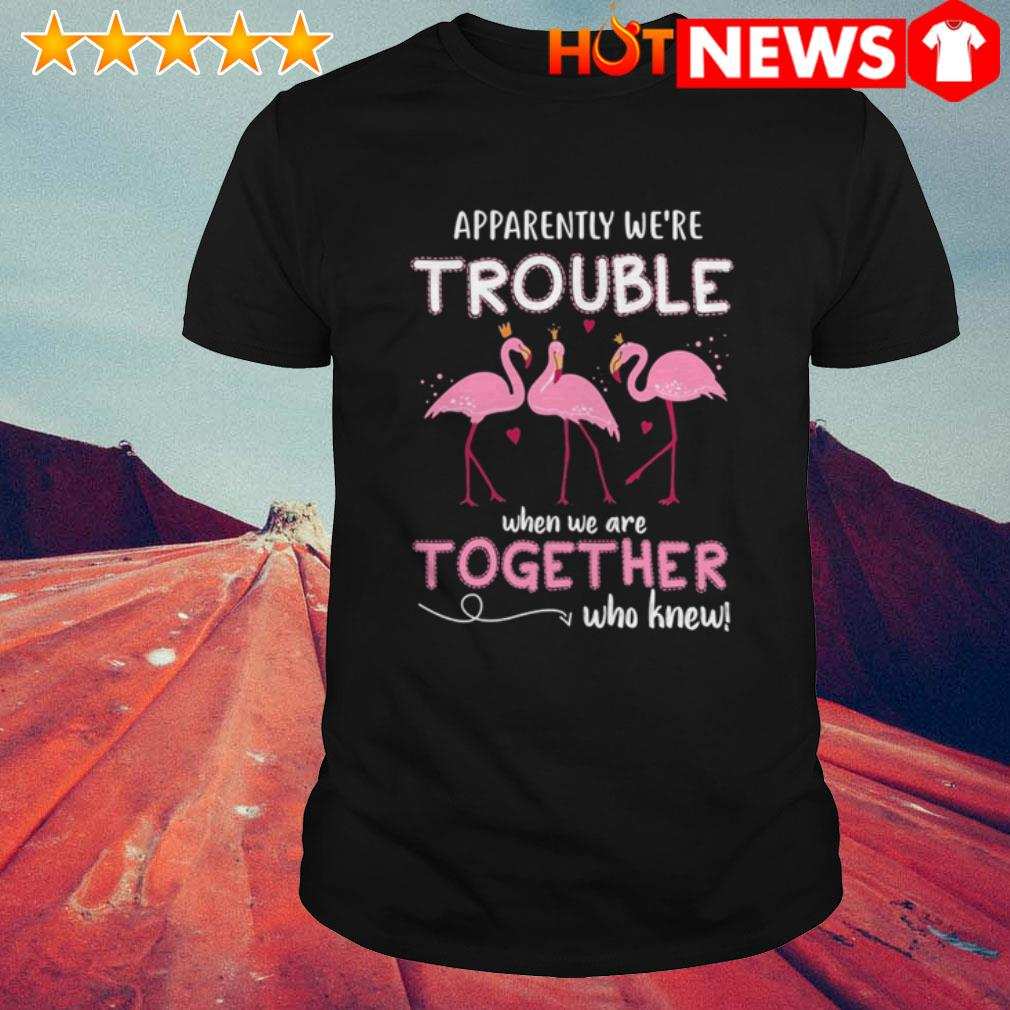 Apparently we're trouble when we are together who knew Flamingos shirt
