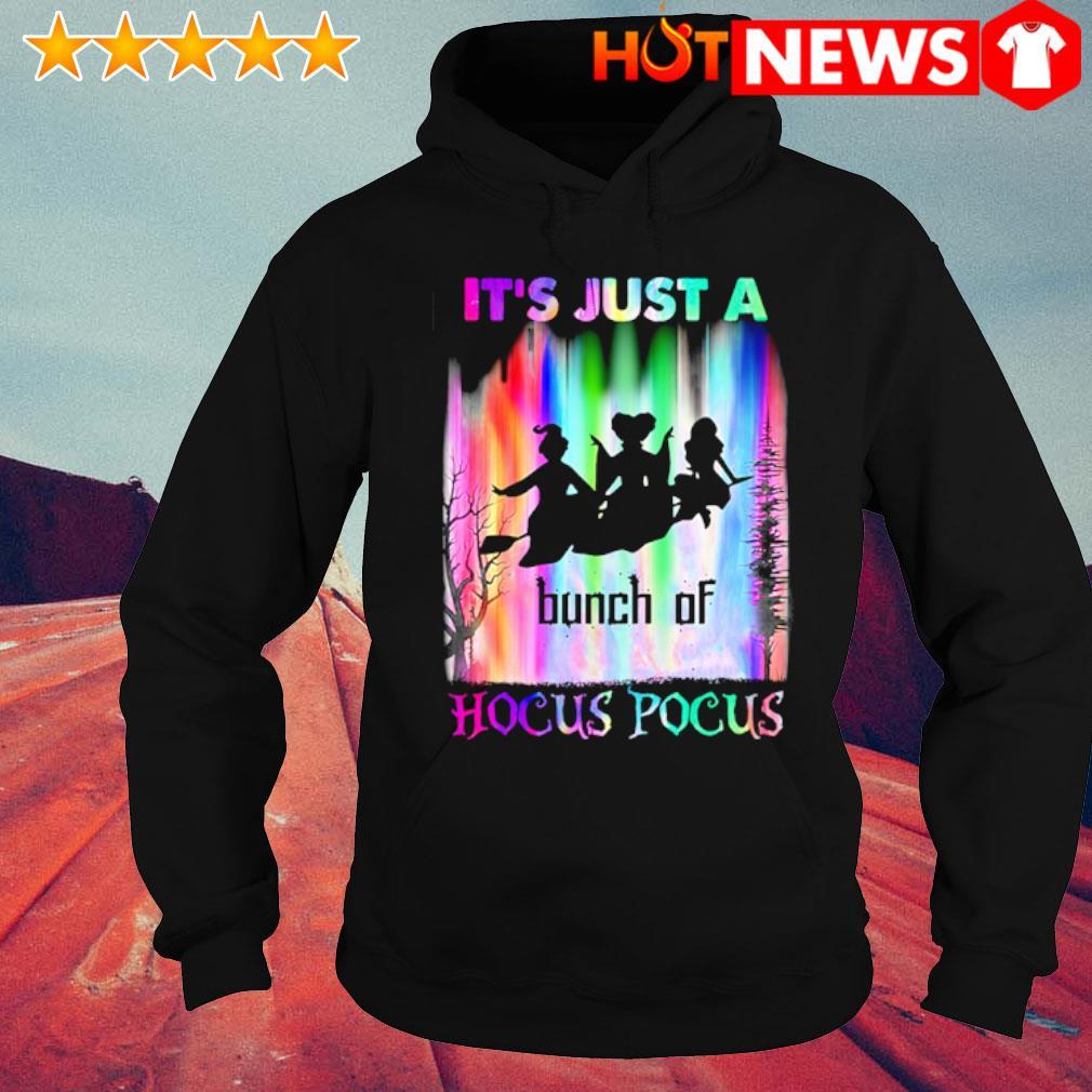 It's just a bunch of Hocus Pocus s hoodie